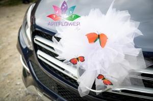 accesorii-masini-nunta-fluturi