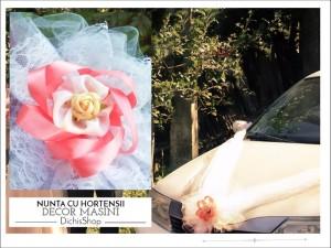 decoratiuni_nunta_masini